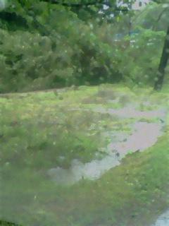 雨・雨・雨